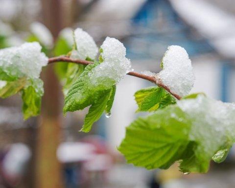 Под Киевом внезапно выпал снег: впечатляющие кадры