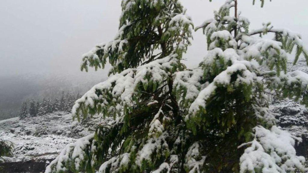 Сильний сніг з дощами: яким областям сьогодні не пощастить із погодою