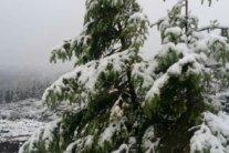 Наприкінці весни Карпати засипало снігом: фото з гори Піп Іван