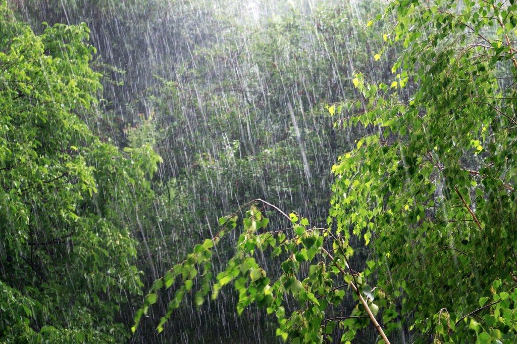 Дощі та похолодання: з'явився повний прогноз погоди на червень