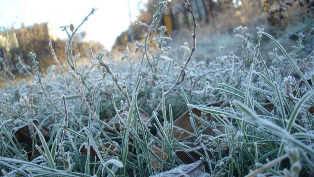 В Украину идет резкое похолодание: где будет очень плохая погода — карта