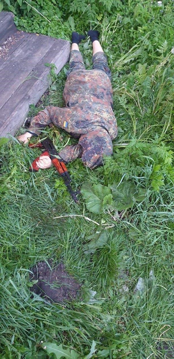 Массовое убийство в Житомирской области: новые фото с места ЧП