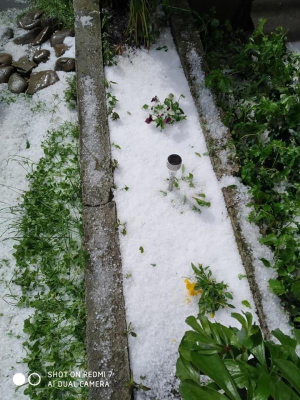 Аномальный град уничтожил урожай на Закарпатье: впечатляющие фото