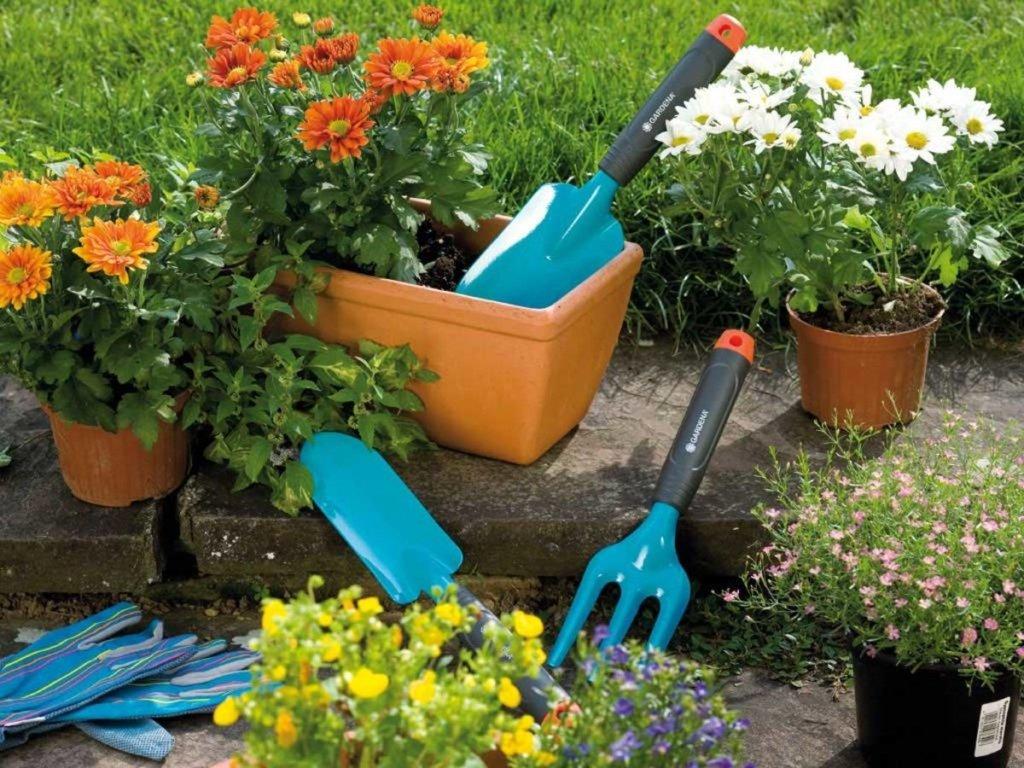 Календар садівника на травень 2020: коли можна саджати для хорошого урожаю