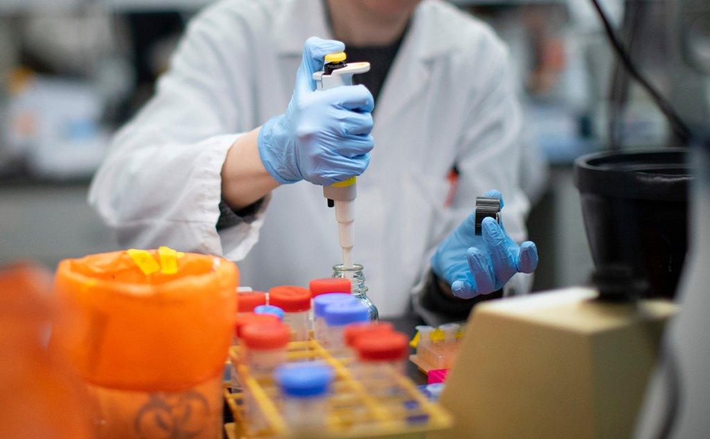 В Киеве разоблачили четыре лаборатории, которые подделывали COVID-тесты