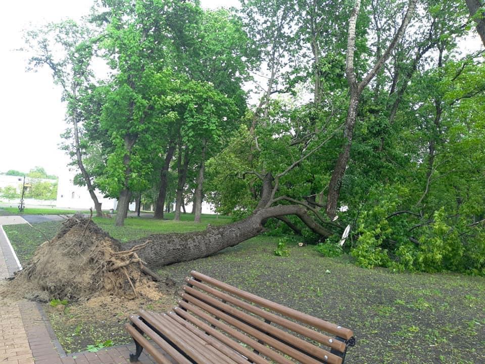 Украину атаковал ураган: появились фото последствий непогоды