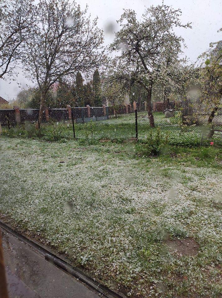 Львов засыпает снегом: появились впечатляющие кадры