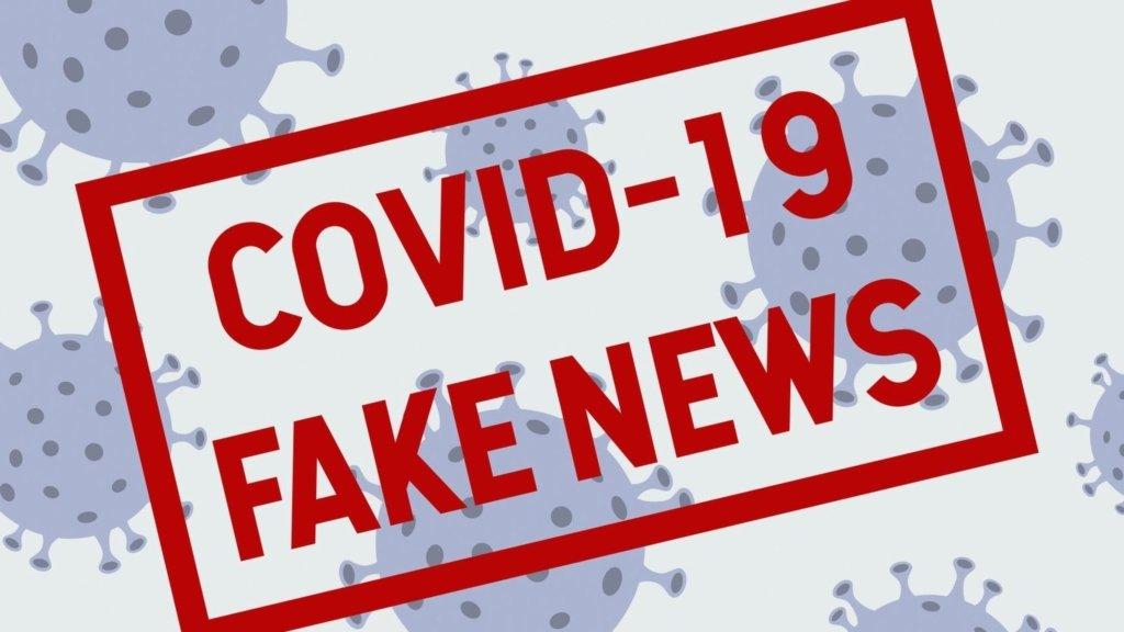 COVID-19 переносять комарі та мухи: українцям розповіли правду про переносників інфекції