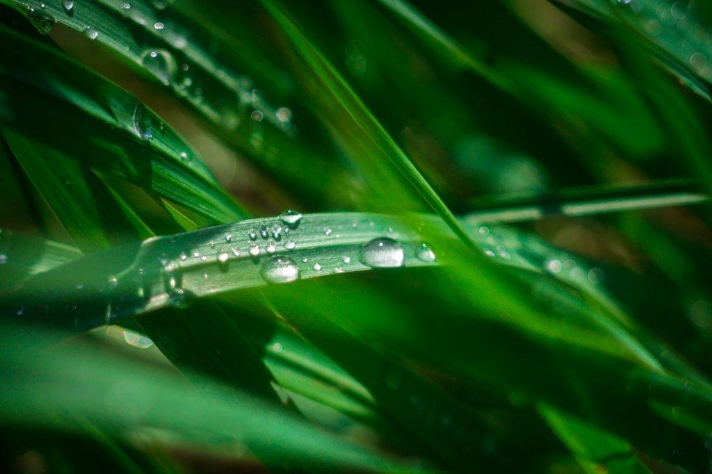 В Україні різко похолодало: прогноз погоди на 13 липня