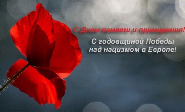 День памяти и примирения 8 мая: красивые поздравления и стихи