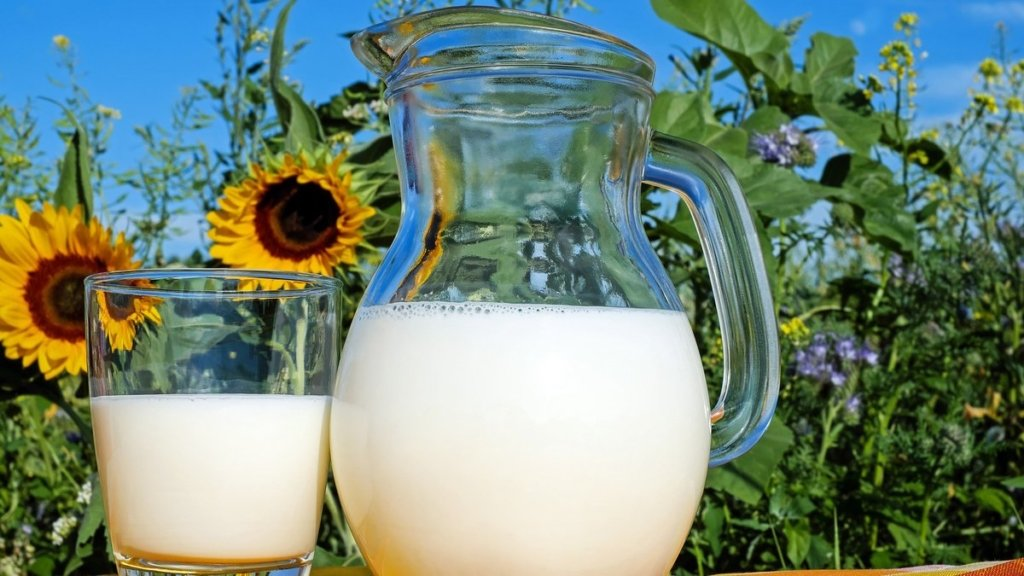 Медики назвали топ-7 причин пить молоко каждый день