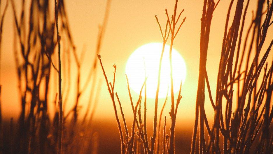 Аномальное тепло возвращается: синоптики дали четкий прогноз погоды