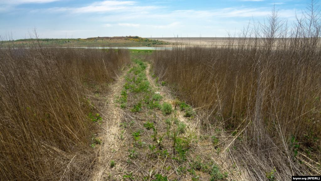 Екологічна катастрофа в Криму 4