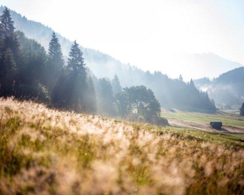 Погодные качели и не только: эксперт прогнозирует аномальное лето 2020