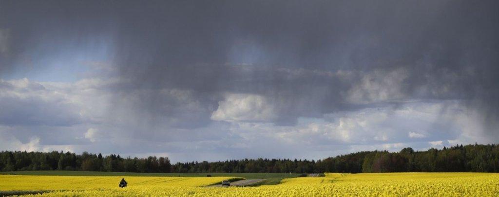 Погода в Україні: В країні оголошено штормове попередження