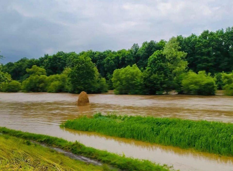 Наводнение на Прикарпатье: эколог назвала жуткую причину