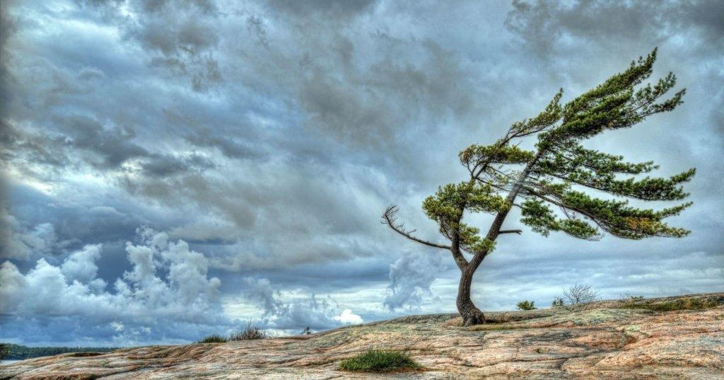 На запад обрушится шторм, а юг затопит: синоптик предупредили о большой опасности