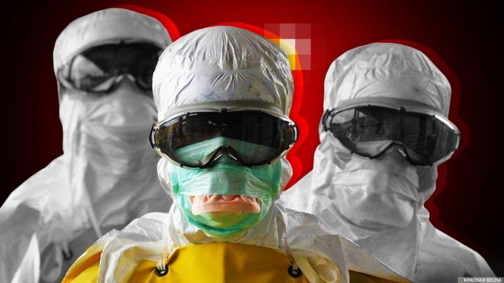 Вспышка бубонной чумы в Китае: что важно знать