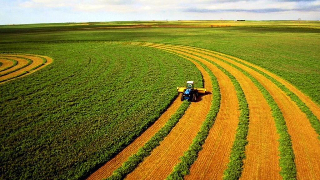 Ассоциации заявили о масштабных манипуляциях вокруг закона о детенизации агропроизводства №3131
