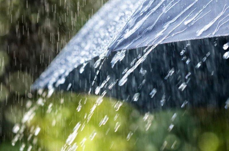 Погода в Україні на сьогодні: злива в західній частині країни