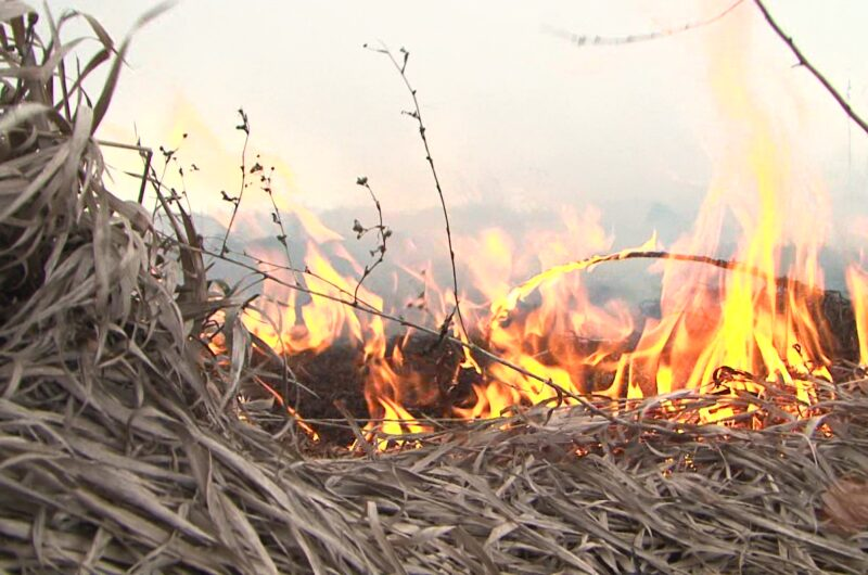Надзвичайний рівень пожежної небезпеки в Україні