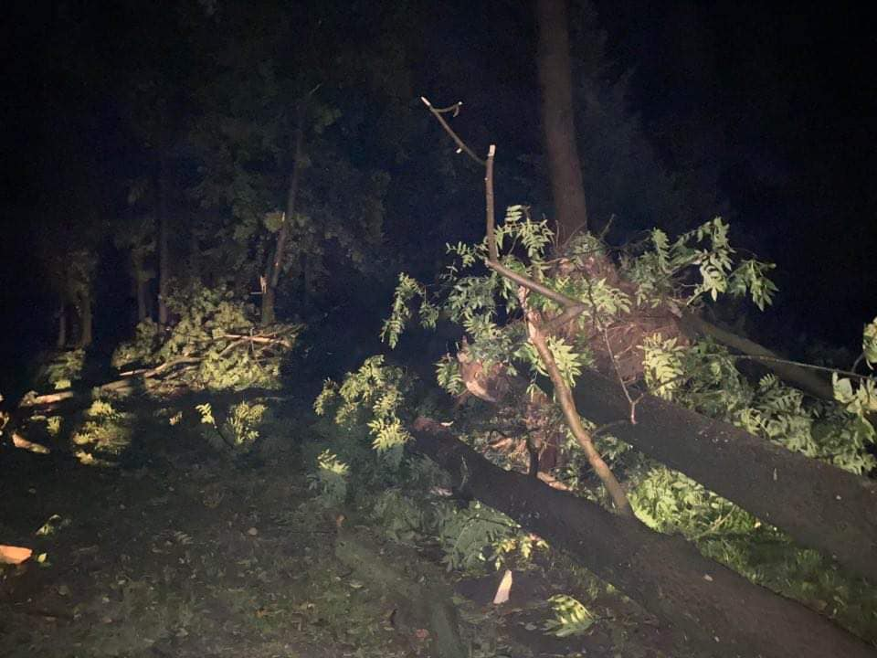 Вітер зривав дахи та валив дерева: Івано-Франківськ накрила потужна буря