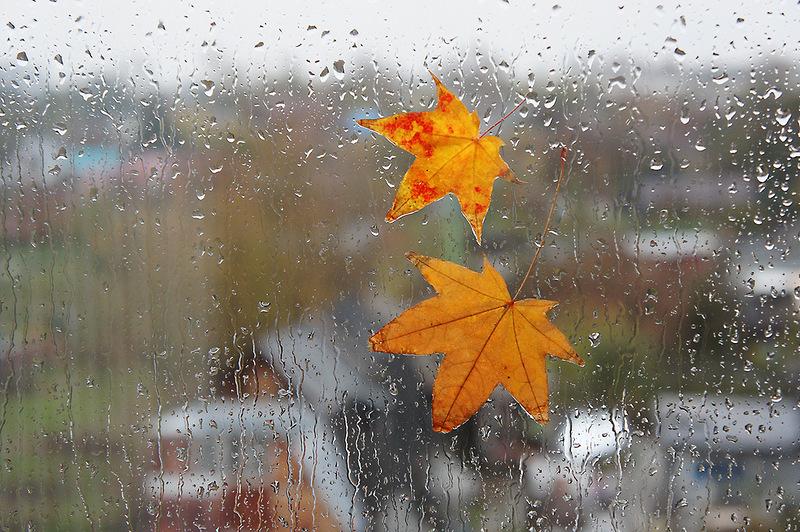 Прогноз погоди на 18 жовтня: в Україні випаде мокрий сніг