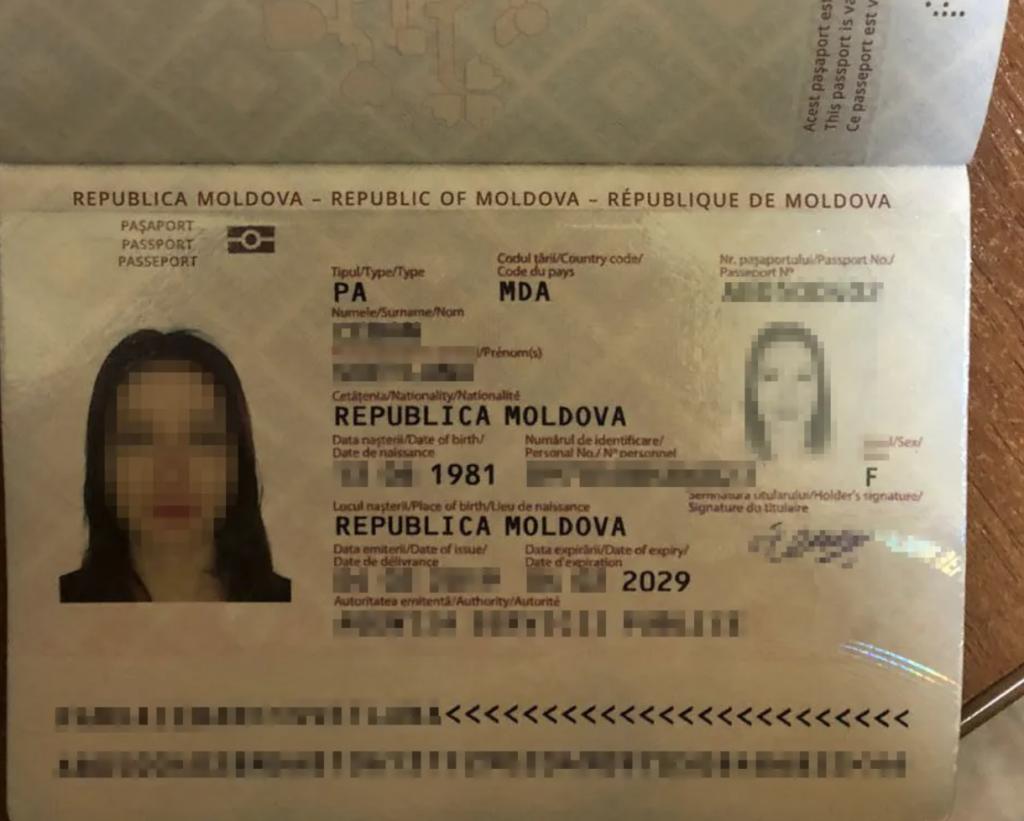 В Украине задержали пропагандистку Кремля — видео