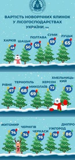 Стали известны цены на новогодние елки по Украине