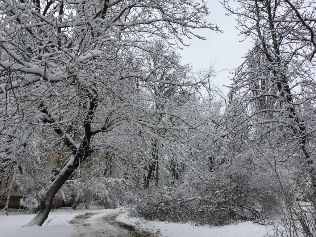 По Україні оголошено червоний рівень погодної небезпеки через снігопад і вітер