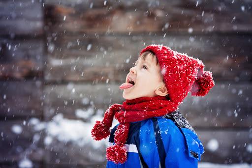 Снегопады в Украине продолжаться: прогноз погоды на 14 января