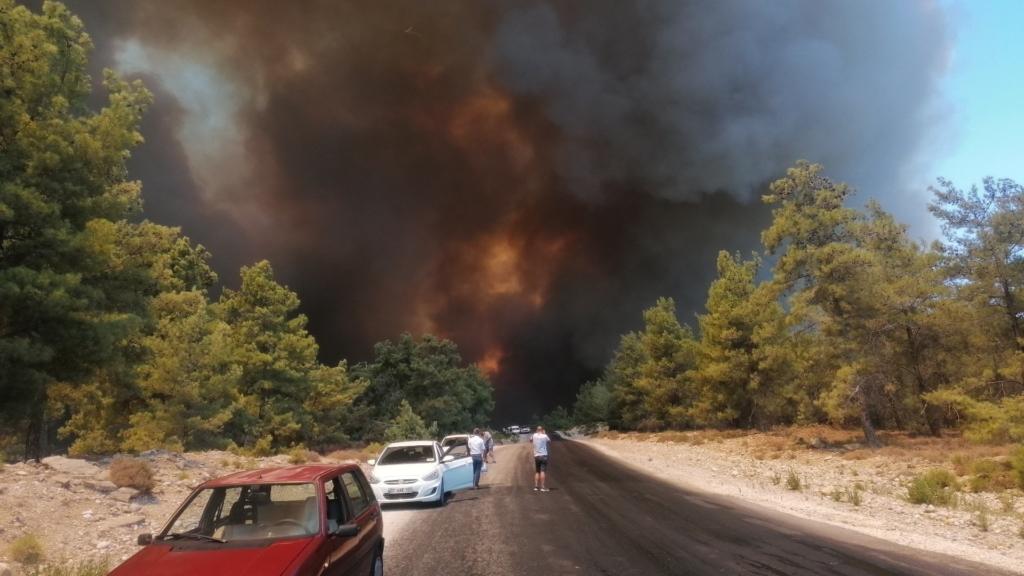 Лісові пожежі в Туреччині дісталися курортів, є загиблі