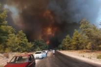 Лісові пожежі в Туреччині вже дісталися курортів Анталії: моторошні кадри