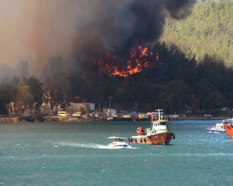 Лесные пожары в Турции: количество жертв возросло, огонь приблизился к ТЕС