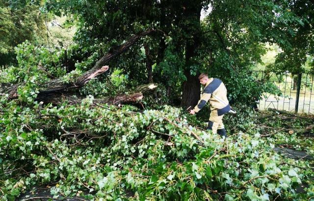Мощный ураган парализовал Закарпатье: кадры непогоды