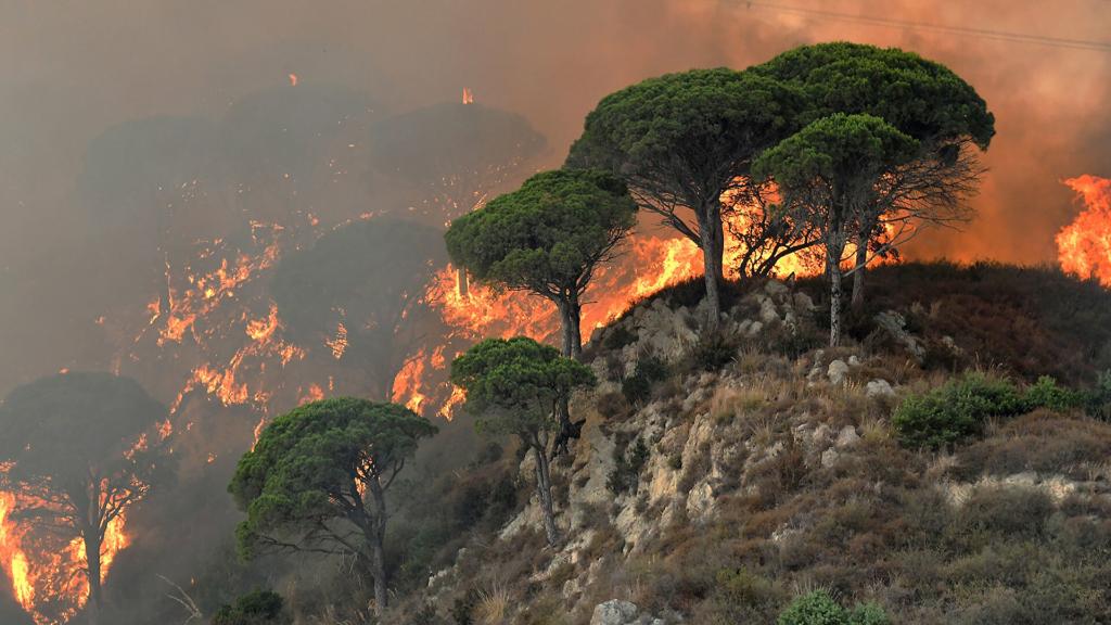 Лесные пожары охватили юг Италии: трое погибших
