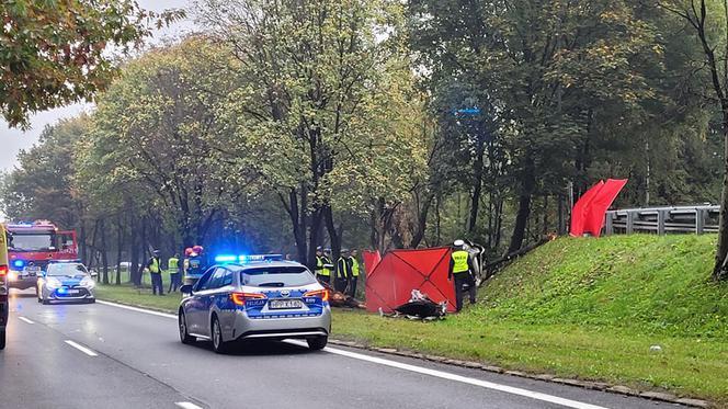 У Польщі у моторошній аварії загинули двоє молодих українців