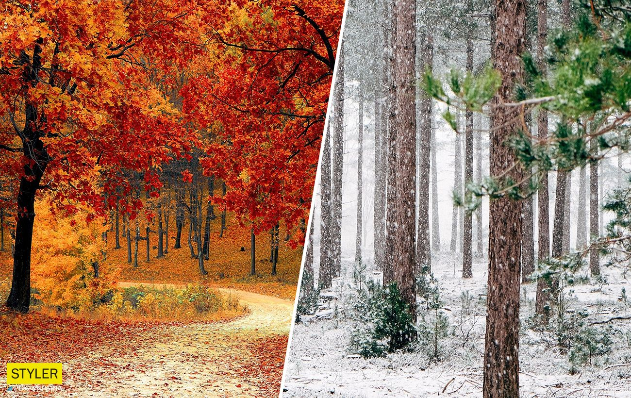 Синоптики обновили прогноз на октябрь и рассказали, ждать первого снега и морозов