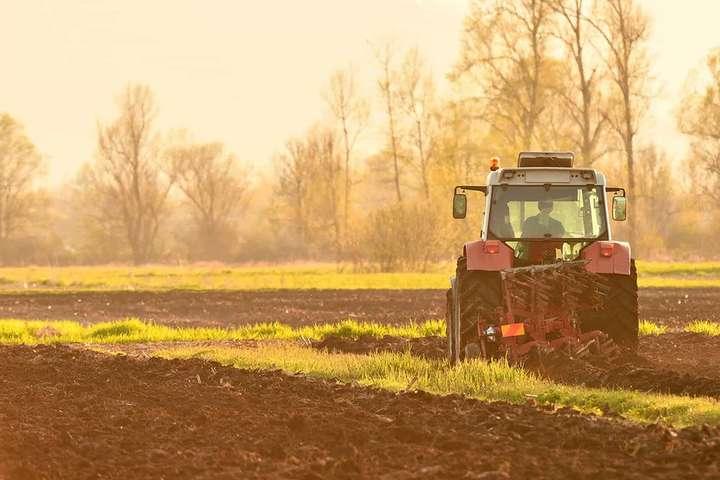 Гарантированные законом два гектара. Можно ли их получить сегодня в Украине?