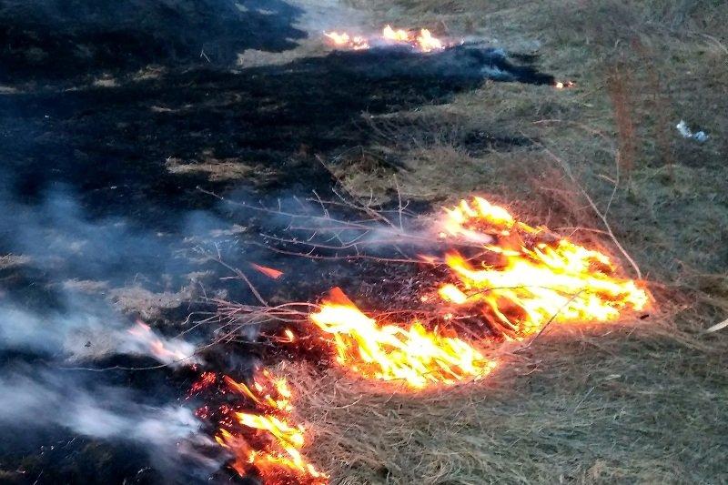 Масштабна пожежа на Луганщині: почалася евакуація жителів — відео