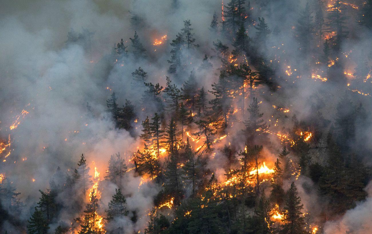 Не вдається локалізувати: в австрійських Альпах виникла одна  з найбільших лісових пожеж