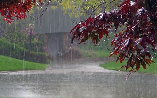 Холодно і мокро: синоптики здивували не «літнім» прогнозом погоди