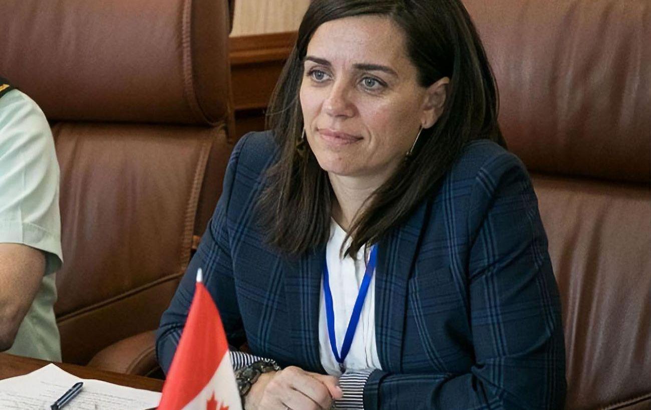 Посол Канады назвала закон об олигархах опасным