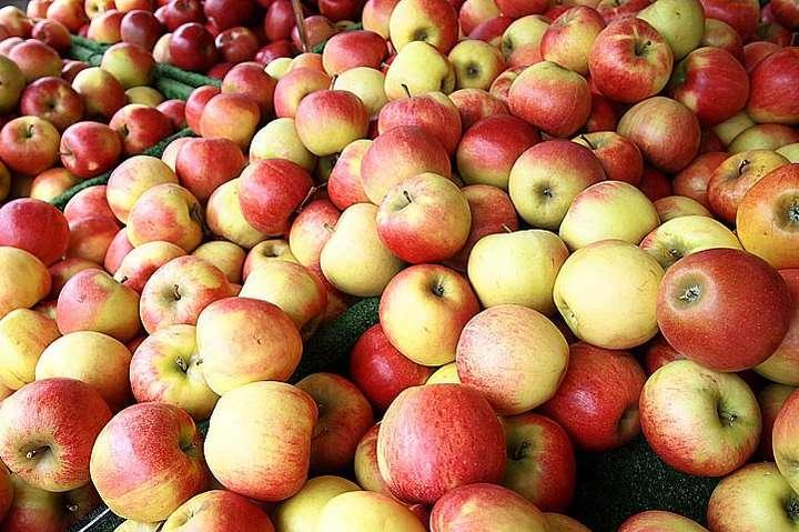 Цены на яблоки взлетят в три раза. Когда ждать подорожания