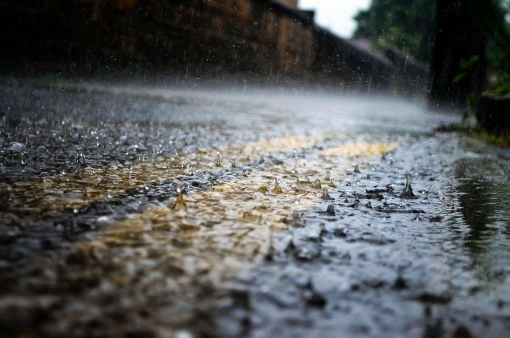 Україну накриють дощі і похолодання: прогноз погоди до кінця тижня