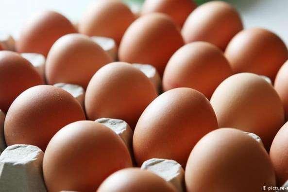 Експерти назвали причину зростання ціни на яйця