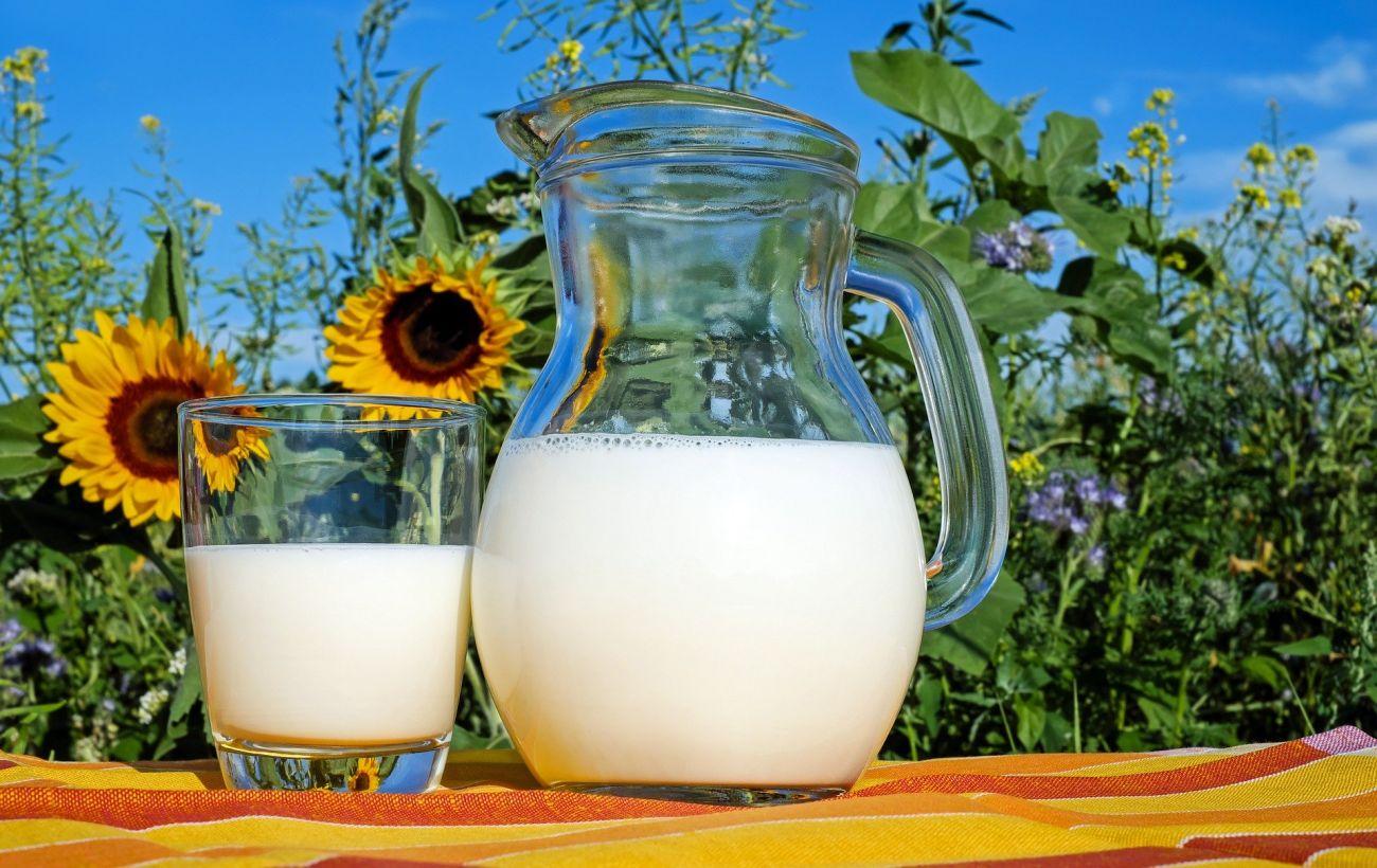 В Україні зросла вартість на молочні продукти: скільки коштує молоко та сметана